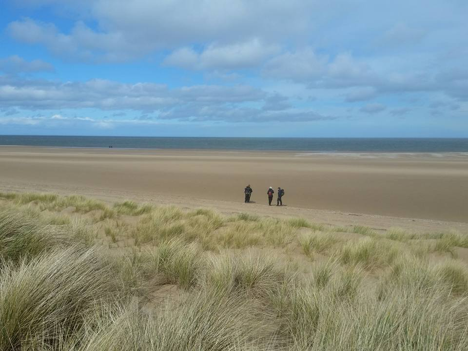 From a Hike Norfolk walk at Holkham